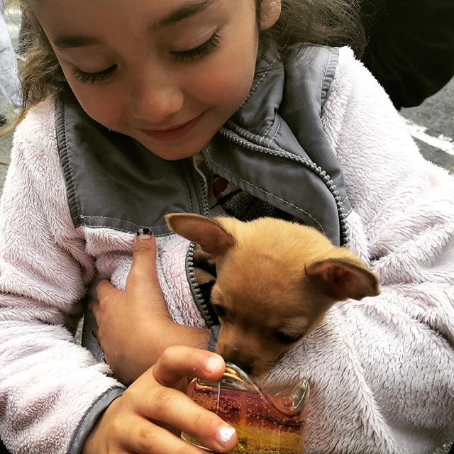 @Gemtera, even our smallest customers are a #big #deal! 😍 🐶  #pocketsize #bff #gemcandles ::