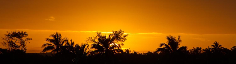 Havana Dawn