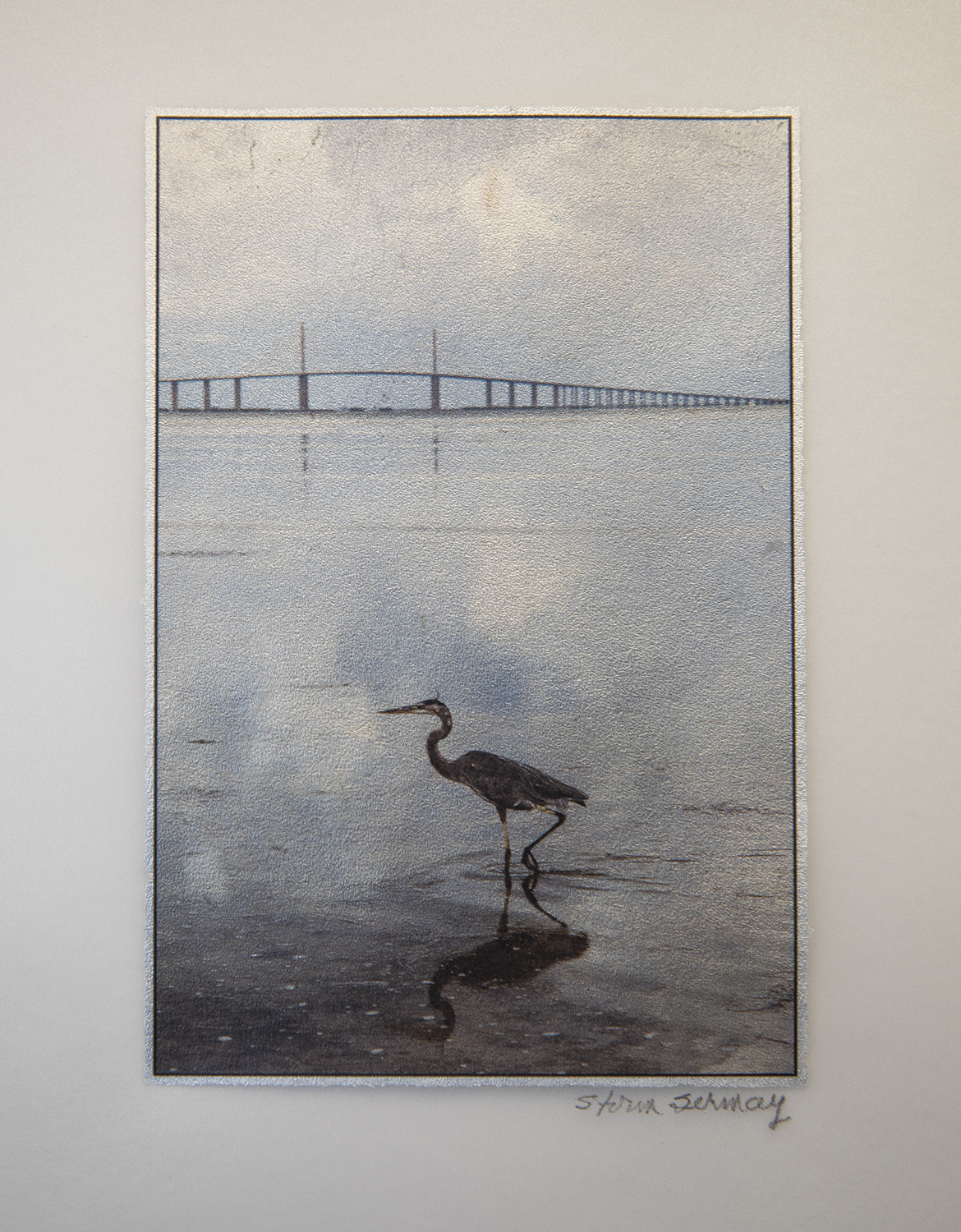 Heron on Tampa Bay with silver leaf