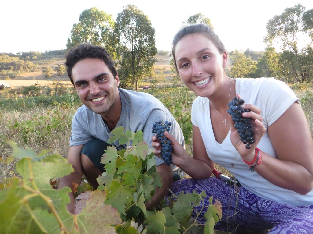 Kristy from Los Angeles and Patrice from Paris help out in the Cabernet