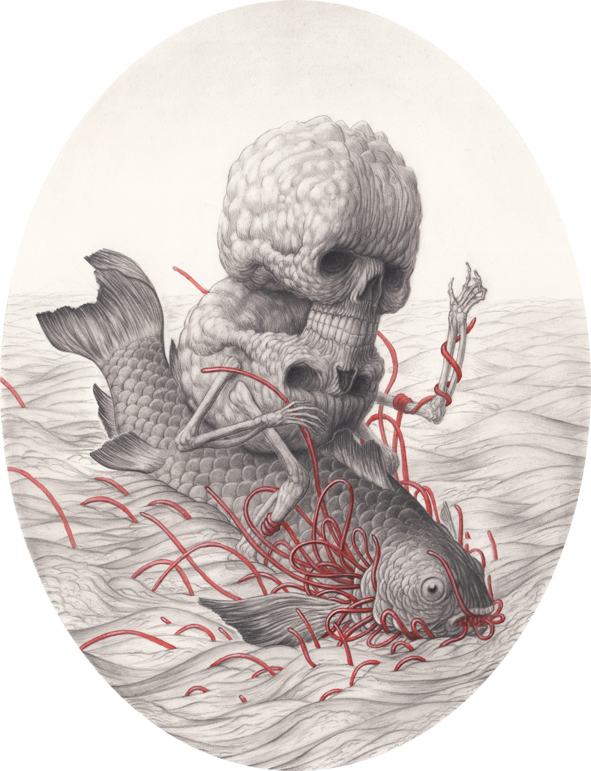 Fish 1 By Nick Sheehy