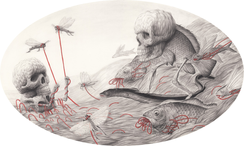 Fish-2-by-Nick-Sheehy.jpg