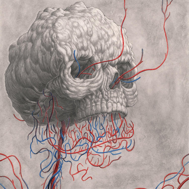 Skull-Variations-1.jpg