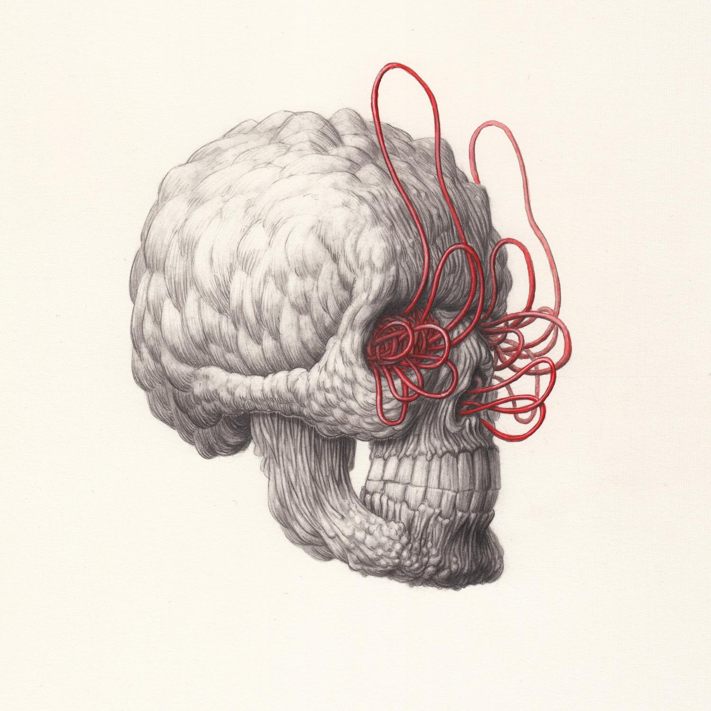 Skull-1-by-Nick-Sheehy.jpg