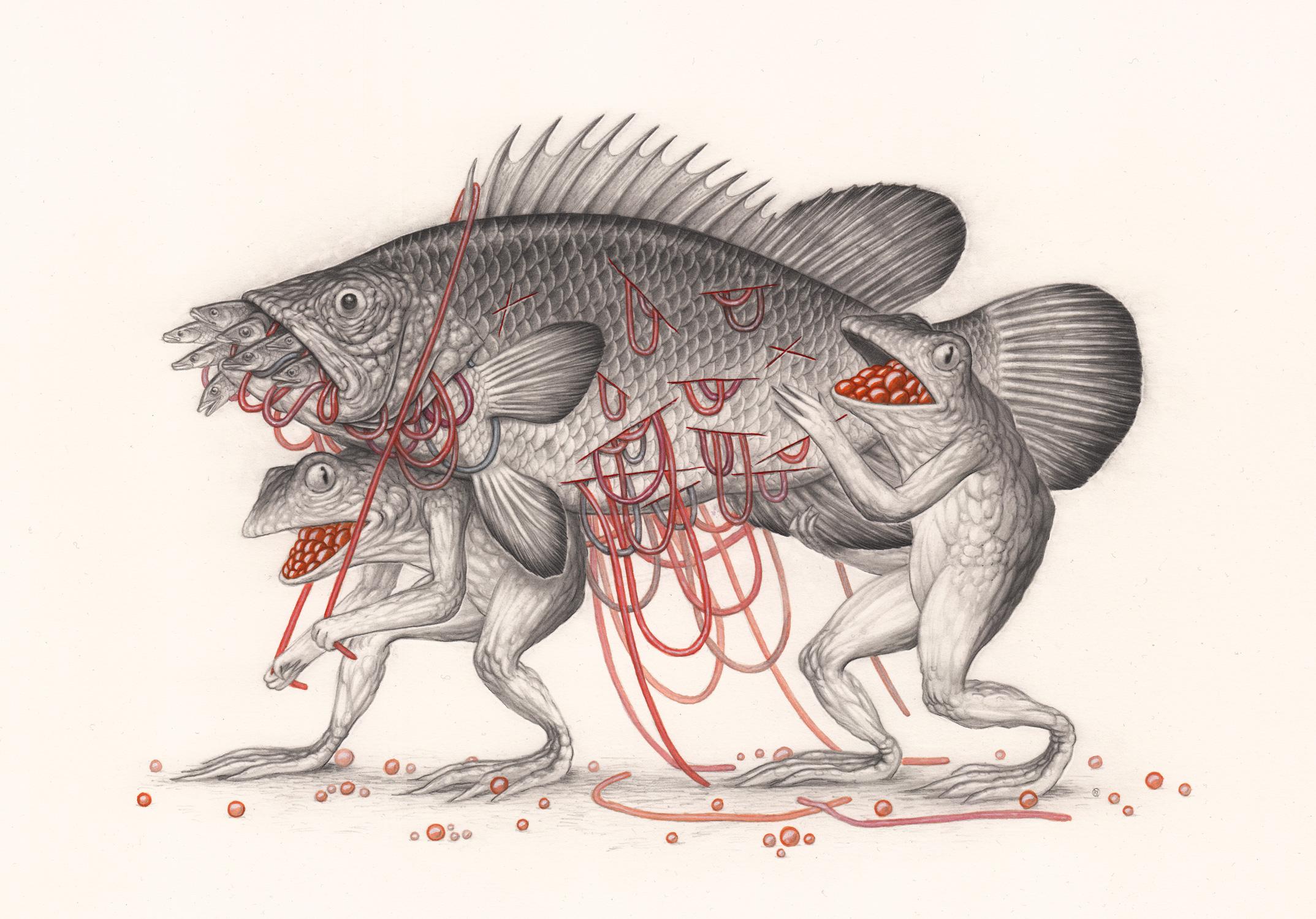 The-Fish-By-Nick-Sheehy.jpg