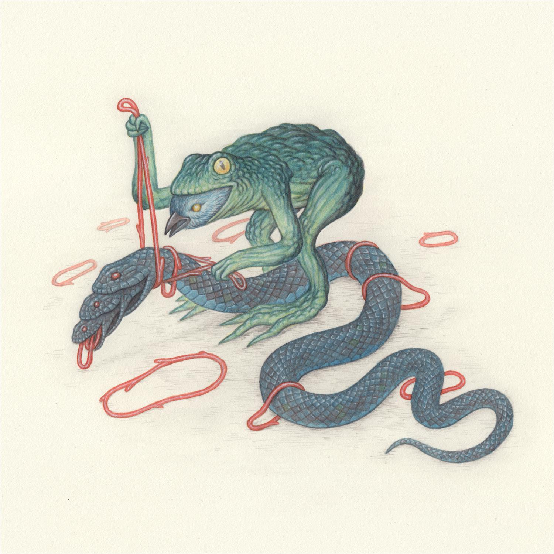 frog-bird-snake-by-nick-sheehy.jpg