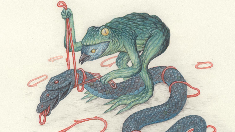 Frog-bird-snake-News.jpg