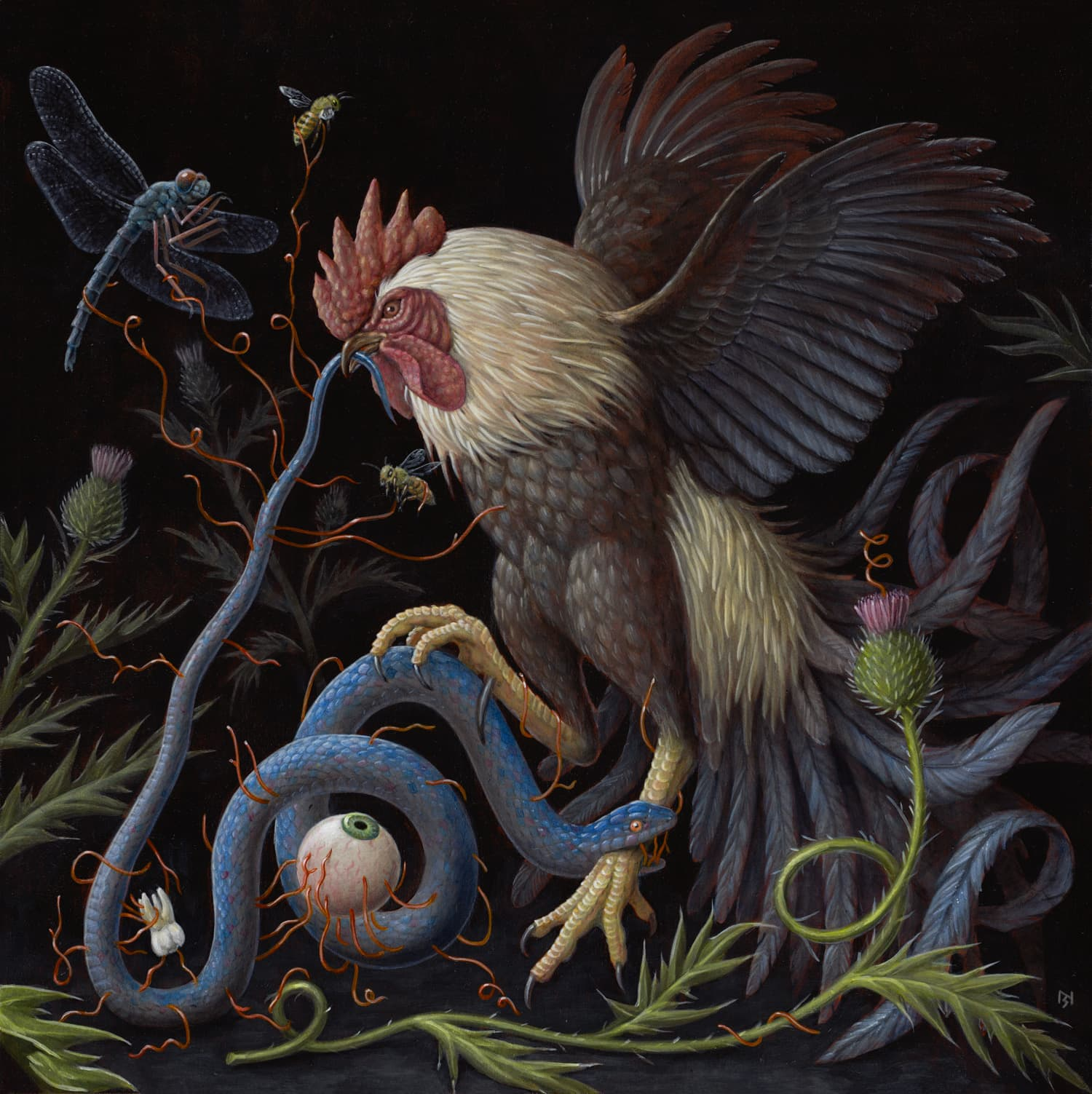 The-Rooster-by-Nick-Sheehy.jpg