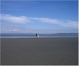 centennial-beach-boundary-bay-1a.jpg