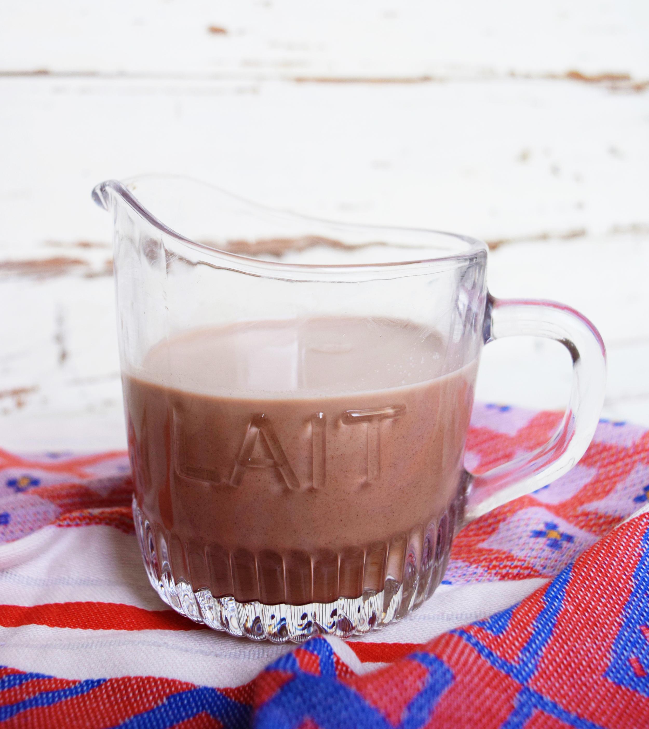 How to Make Chocolate Hemp Milk | Selva Beat Magazine