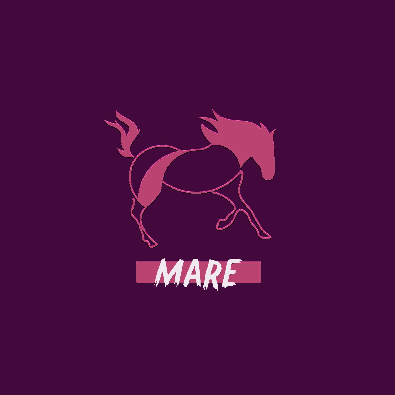MARE_LOGO.jpg