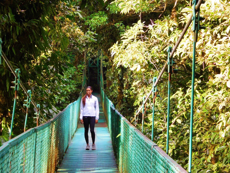 suspension bridges cloud forest.jpg
