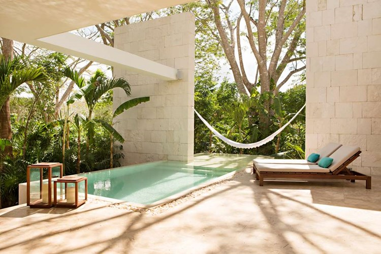 Best resort for wellness in Mexico