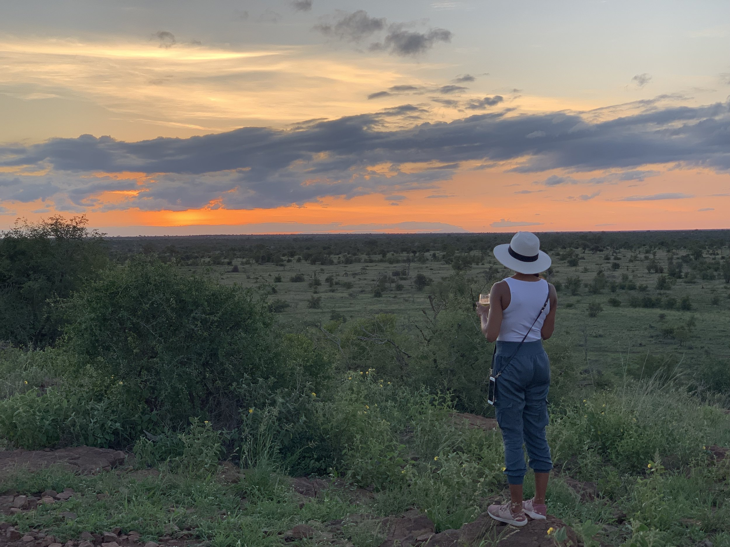 A packing list for safari