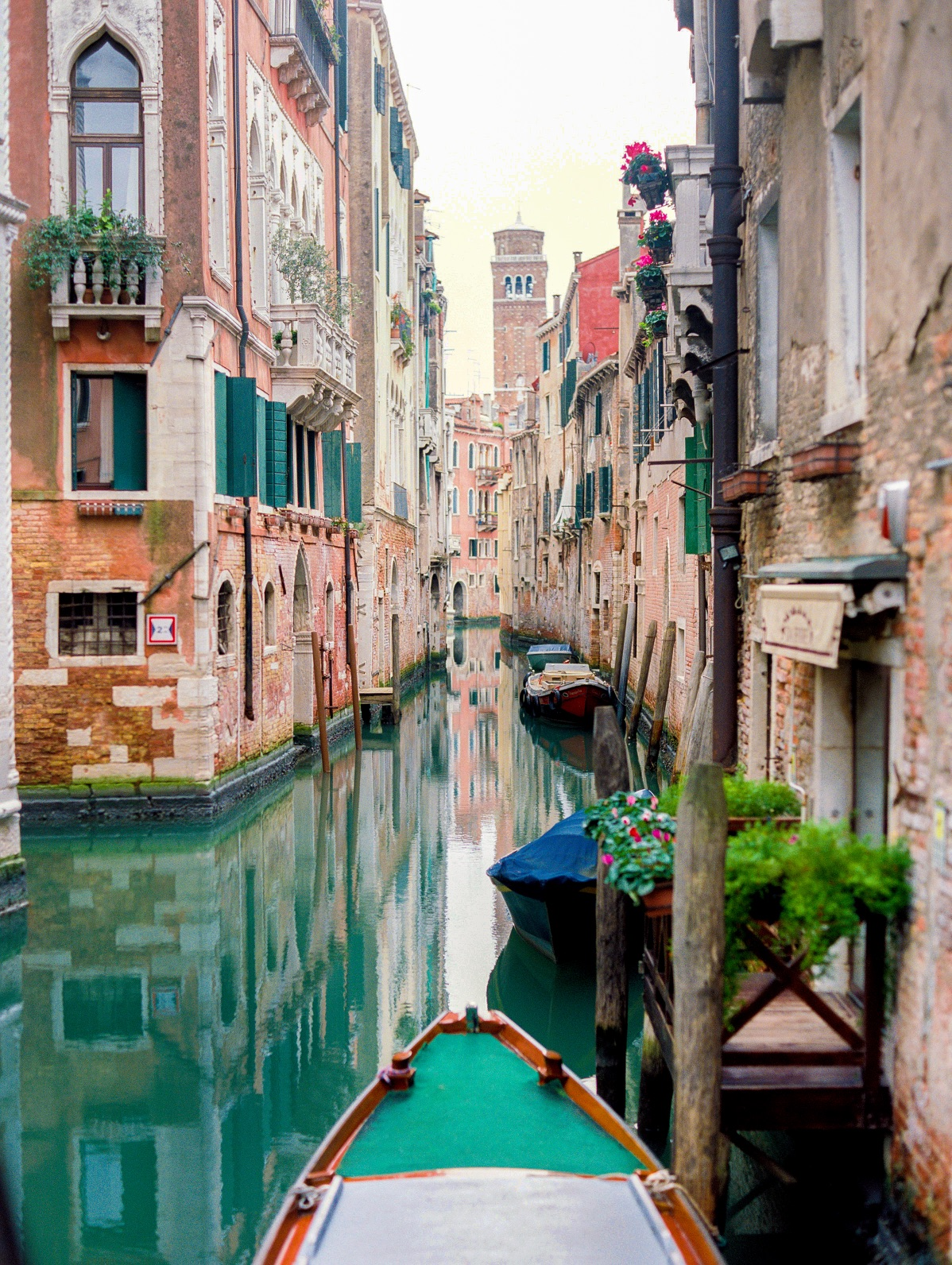 Why you should visit Venice in winter