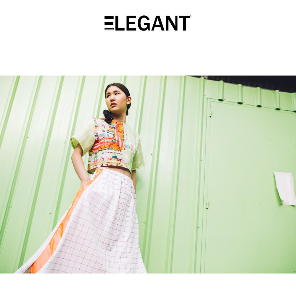 elegant2.jpg