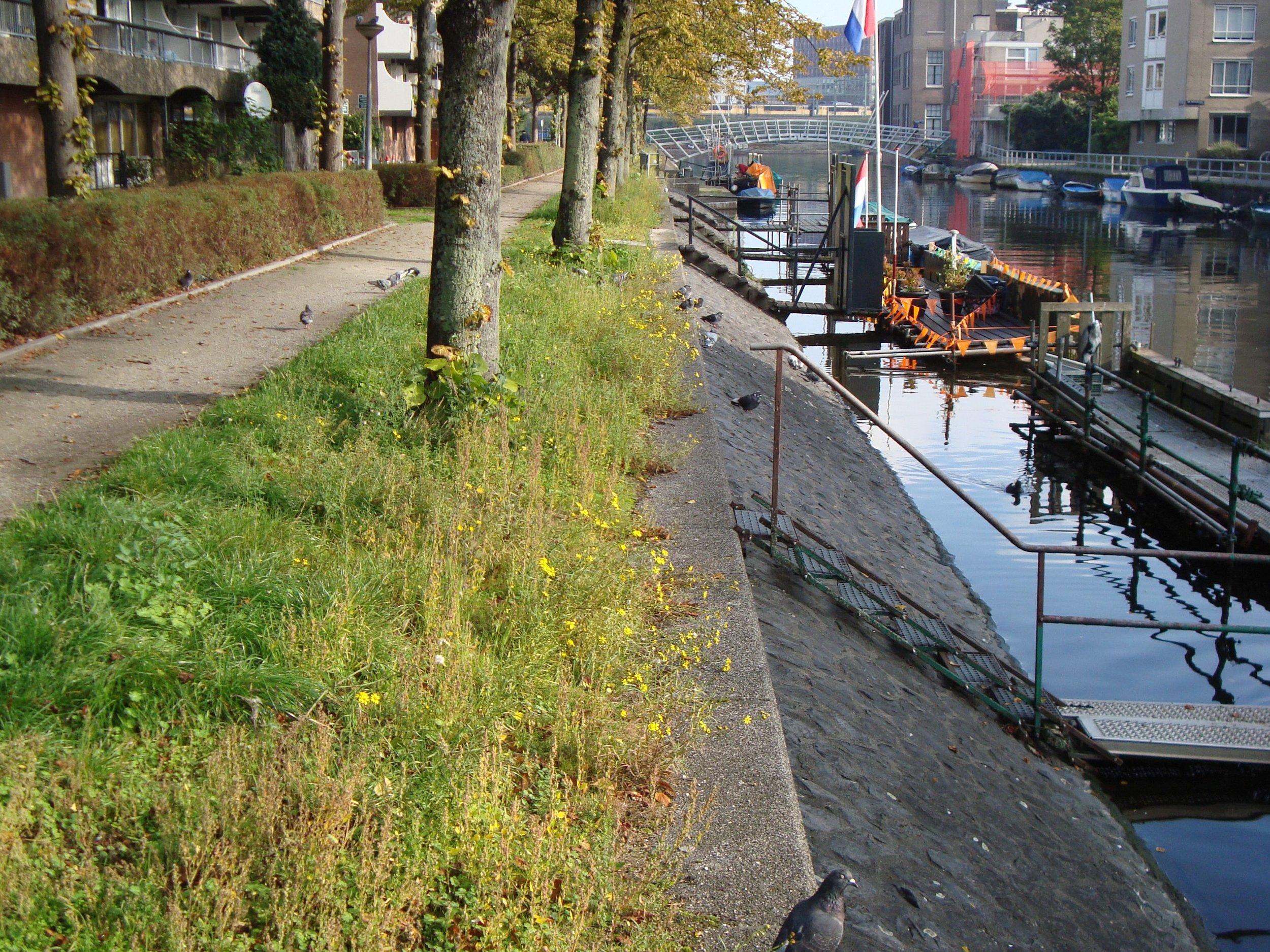 kattenburgerkade foto 2 2014.jpg