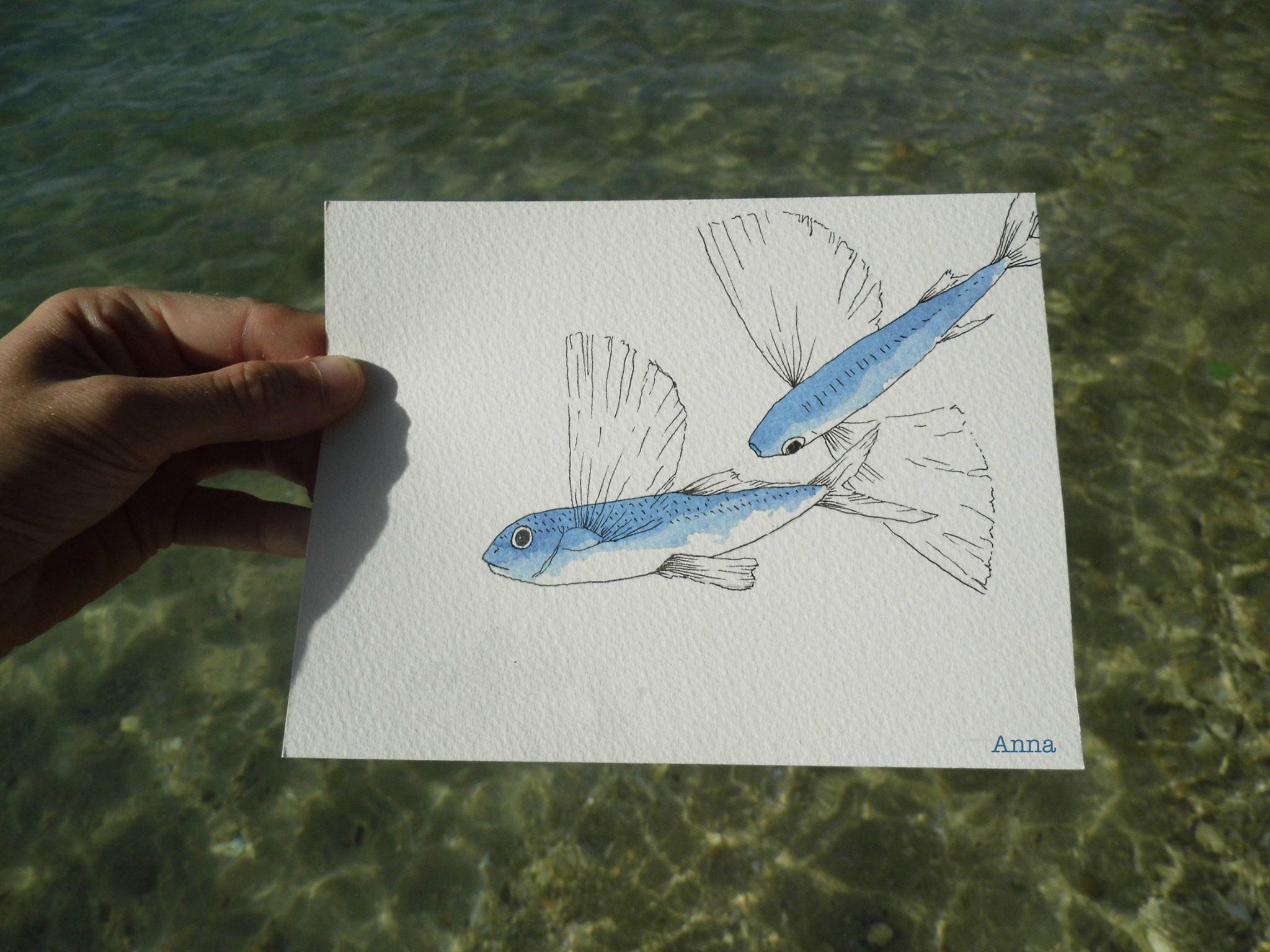 Les nombreux poissons volants croisés lors des navigations.