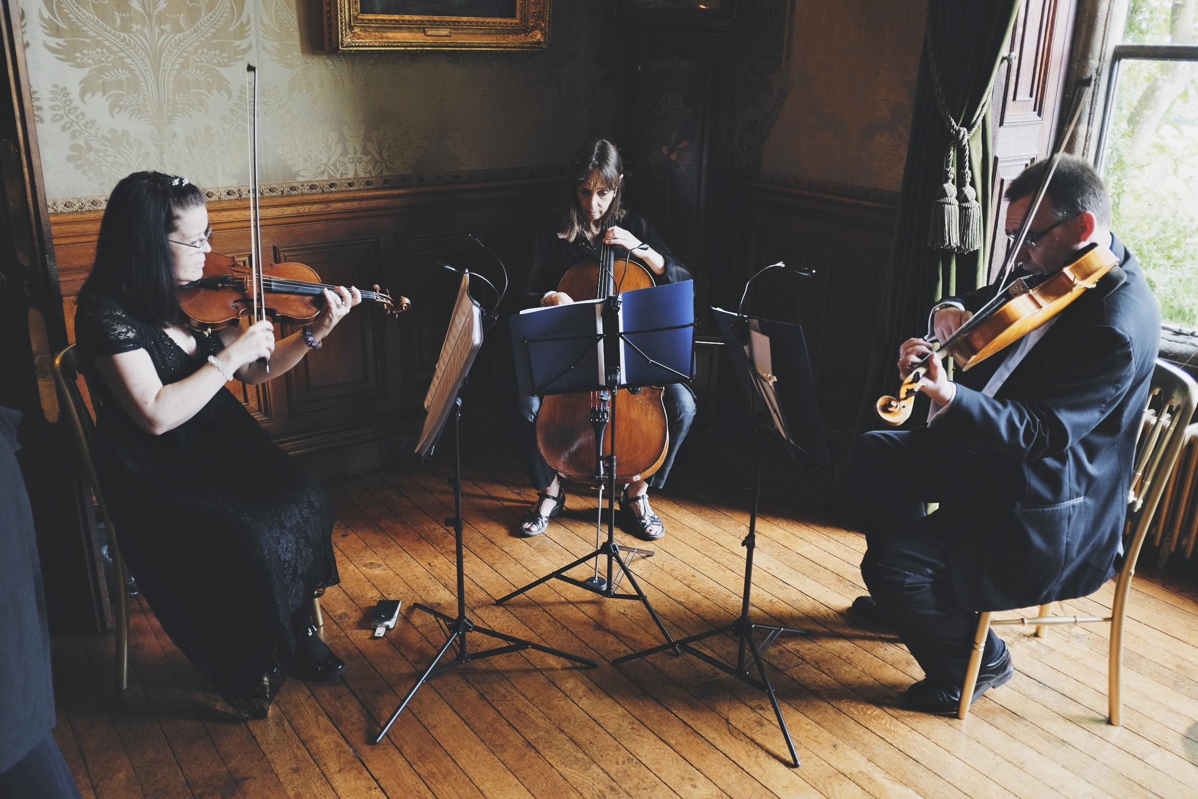 Ariella Strings Holdenby House