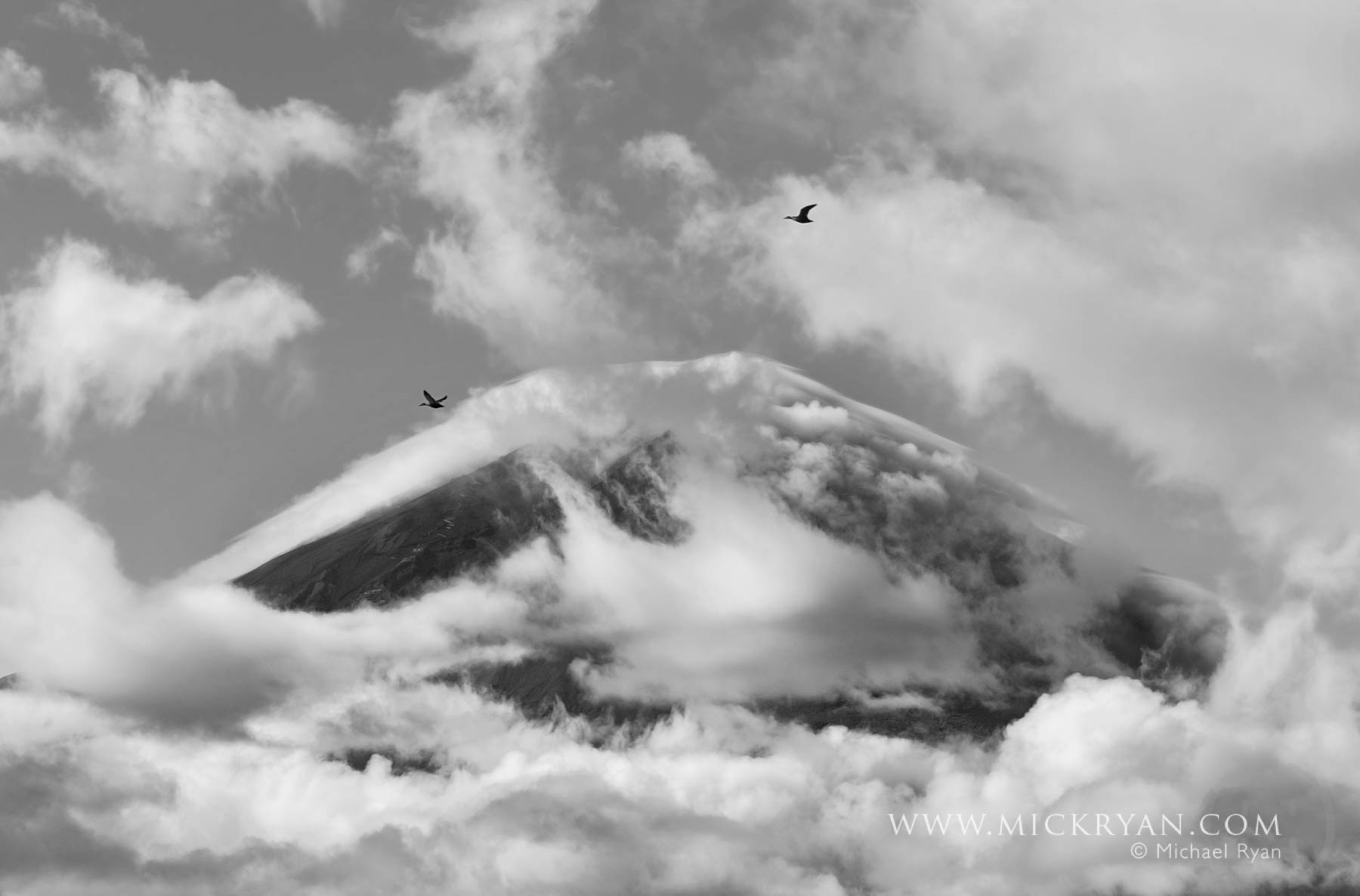 Geese fly south over Mt. Fuji
