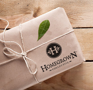 For the Green Thumb or aspiring greenish/grey thumb:  Green Box Subscription from  Homegrown Collective