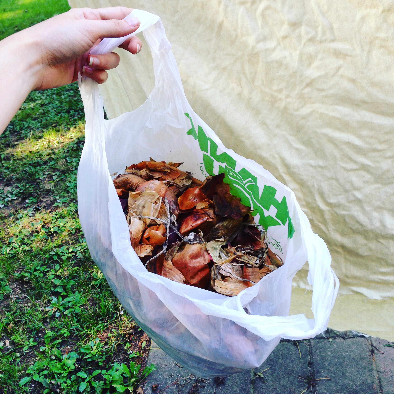 A bag of onion skins