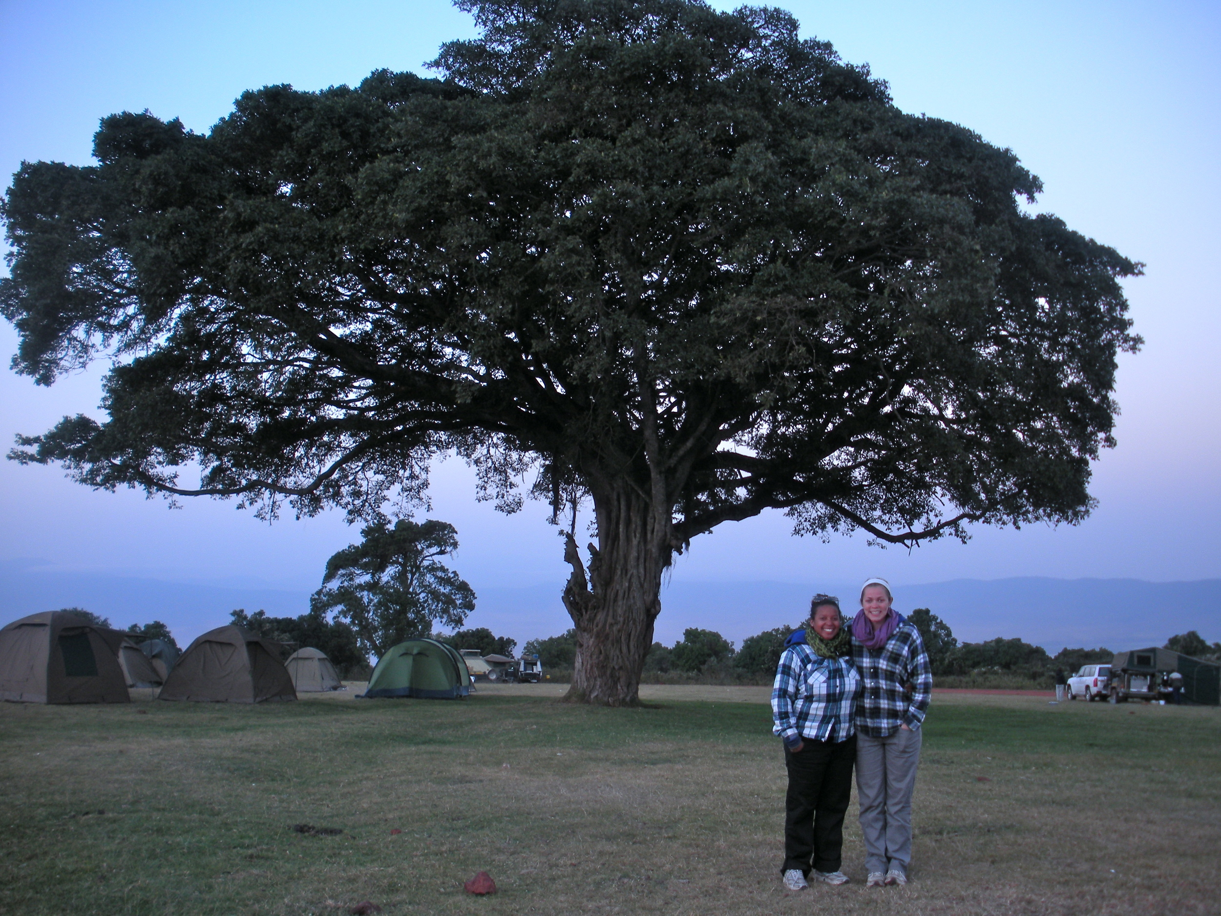 Lia and Katie and a HUGE tree on the rim of Ngorogoro Crater in Tanzania
