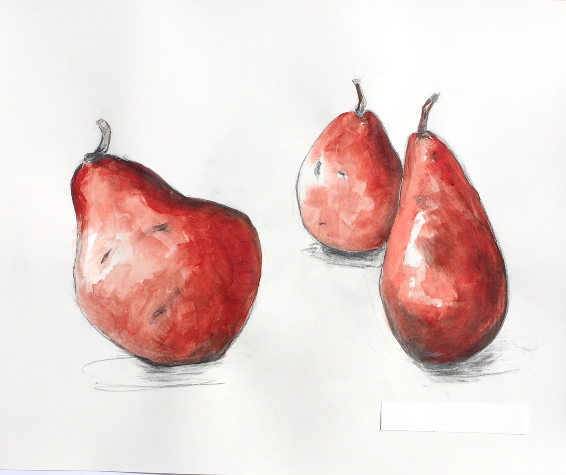 """Tipsy Pears""  Watercolor on Paper 19"" x 25"""