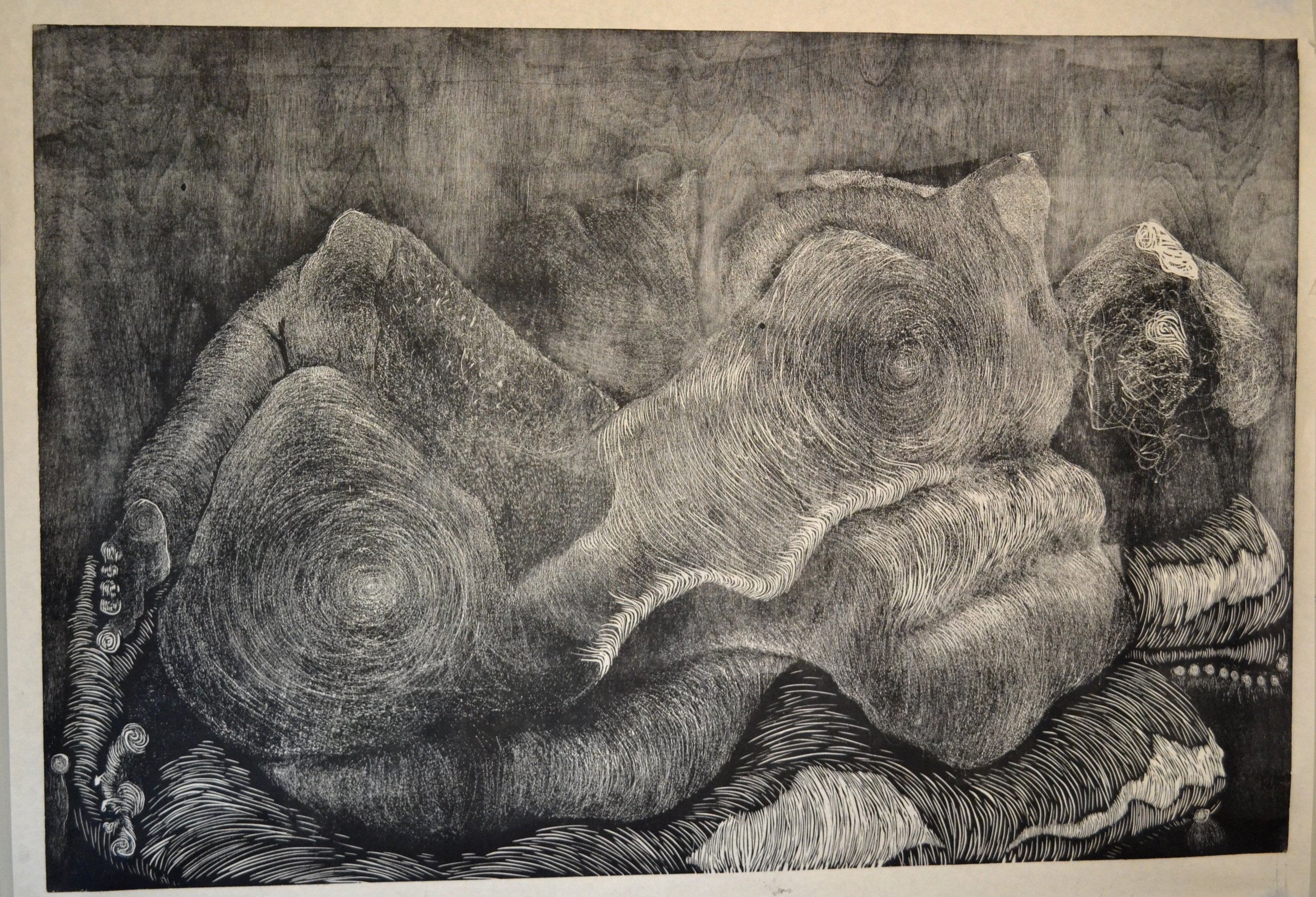 """Curled 2   48""""x36"""""""