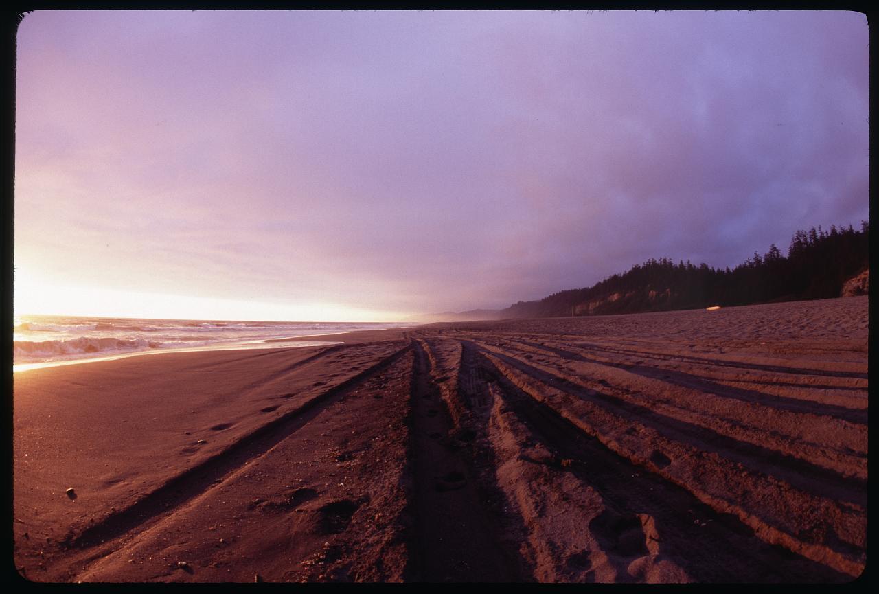 gold-bluffs-beach-1_2703864824_o.jpg