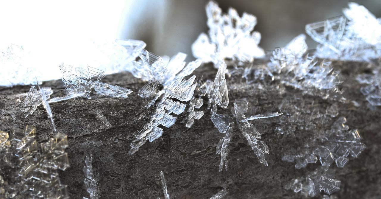 more-icy-detail_3292285302_o.jpg
