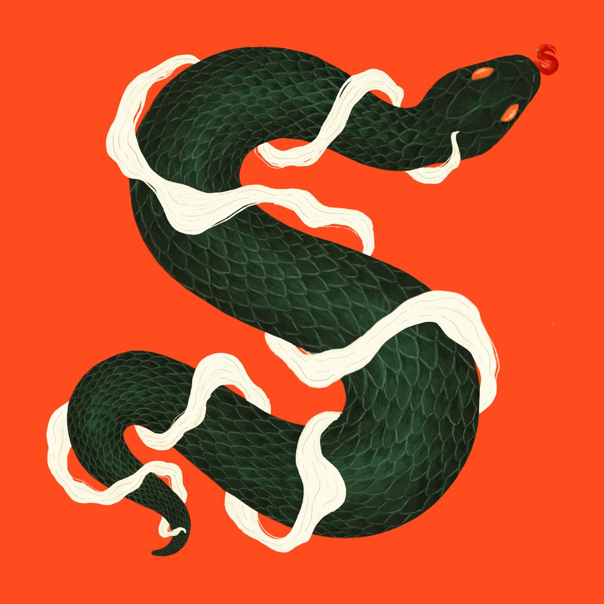 samantha-lee-s-snake.png