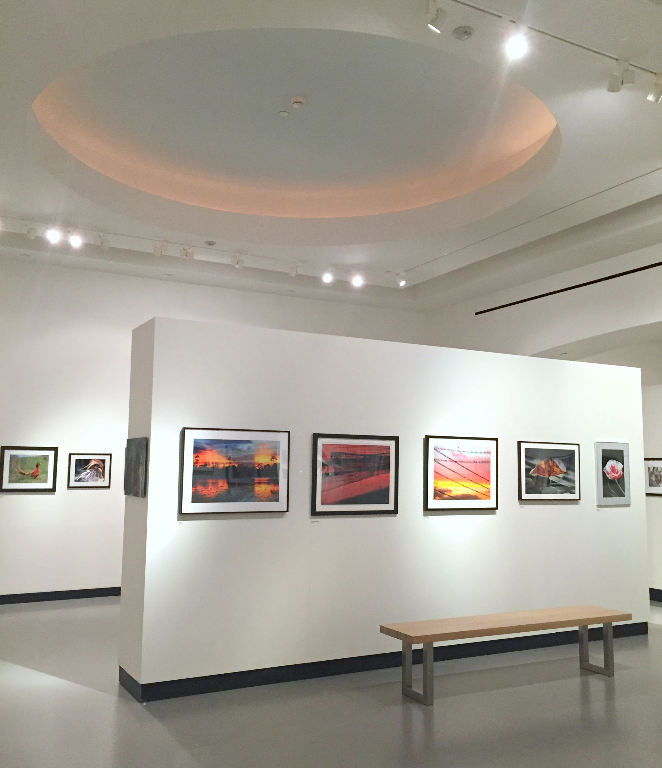 Palm Beach Photography Center