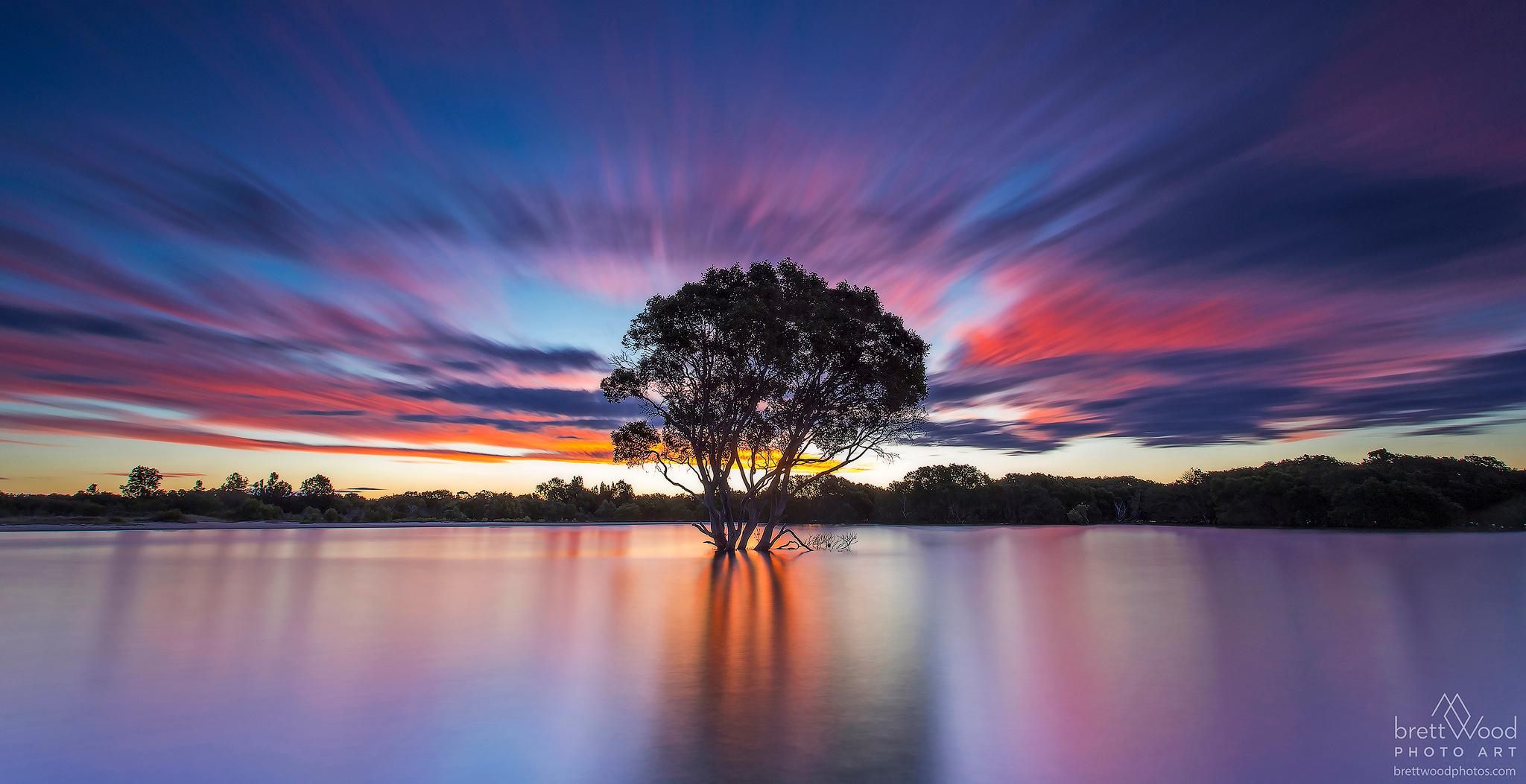 Pelican Island - Port Macquarie