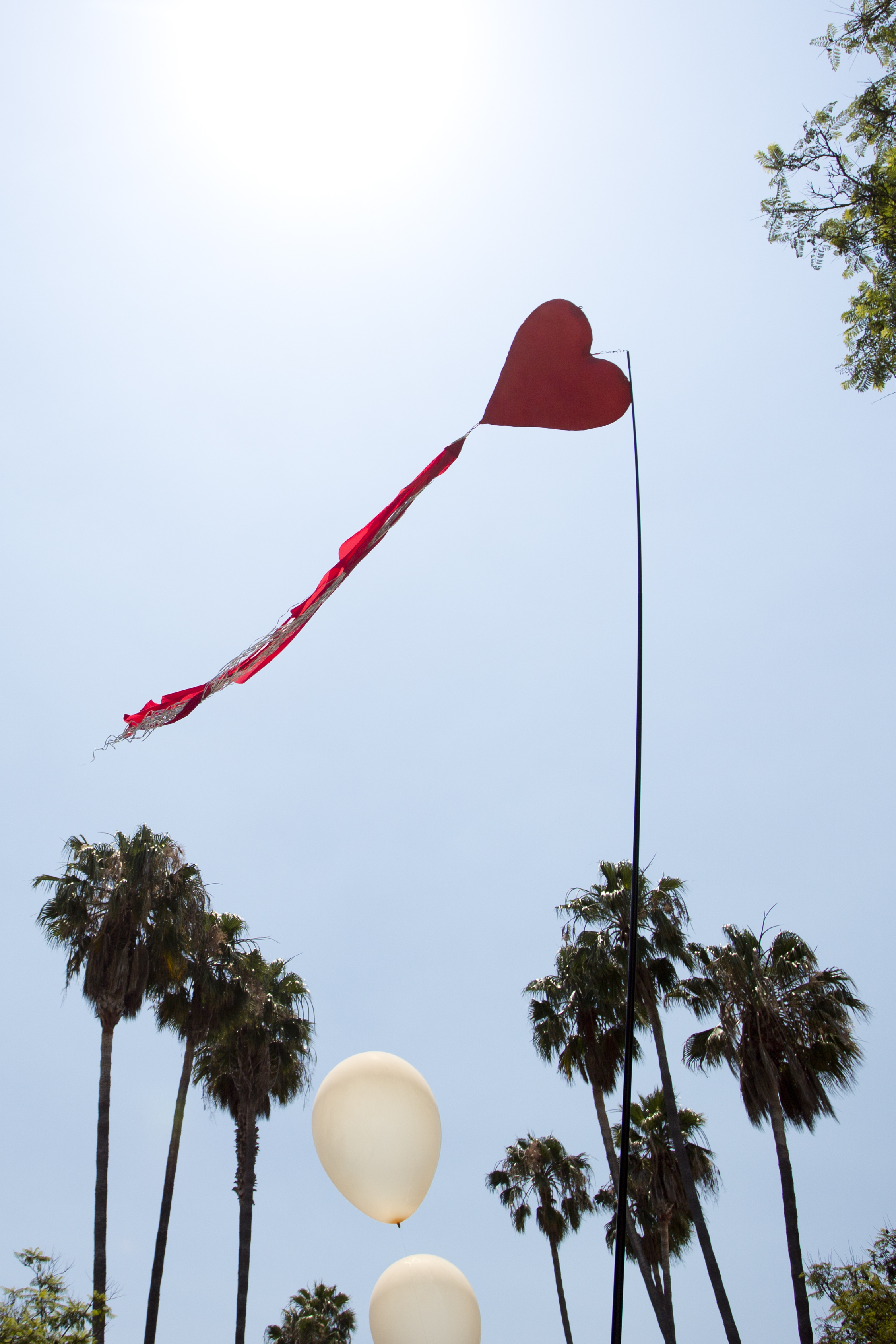 Heart Skywhip by Matthew McAvene.jpg