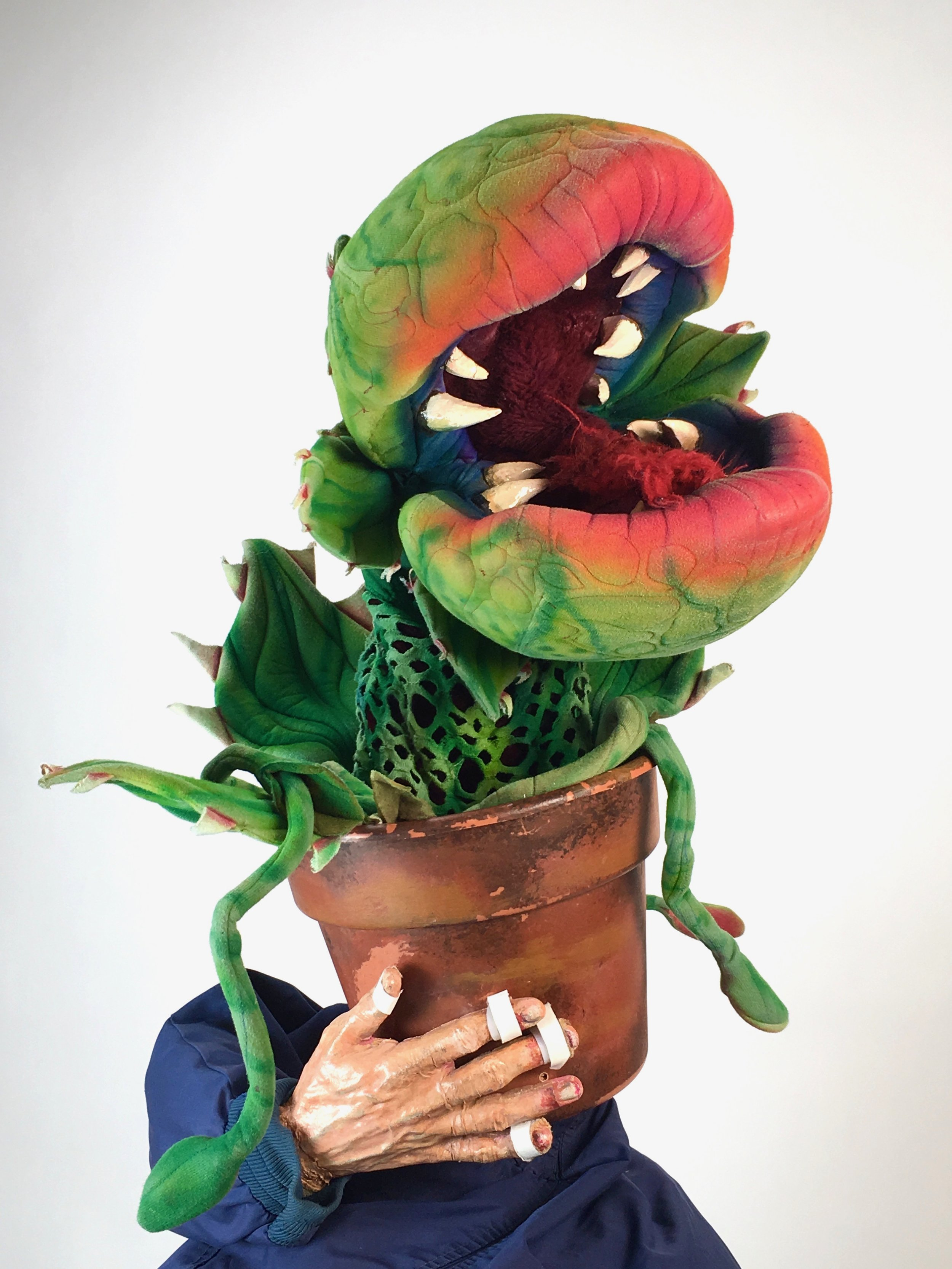 Little shop of Horrors Rental Audrey 2 (Puppet 2of4) by McAvene.jpg