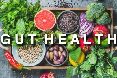 - GUT HEALTH