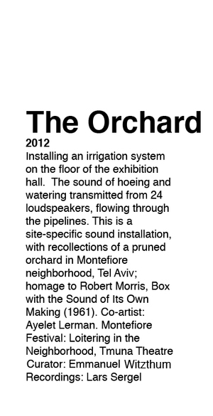 orchard copy.jpg