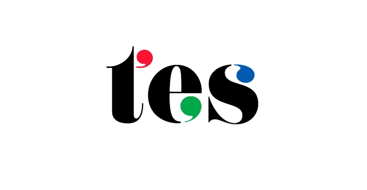 TES logo with border.jpg