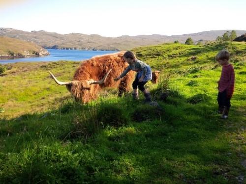 Highland cow and kid photo TH.jpg
