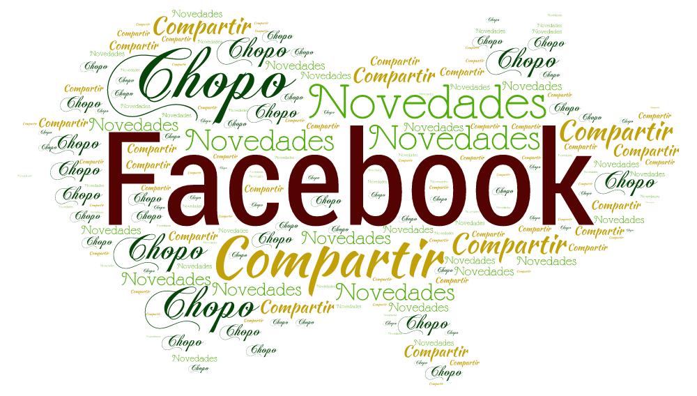 Cerdito facebook Chopo