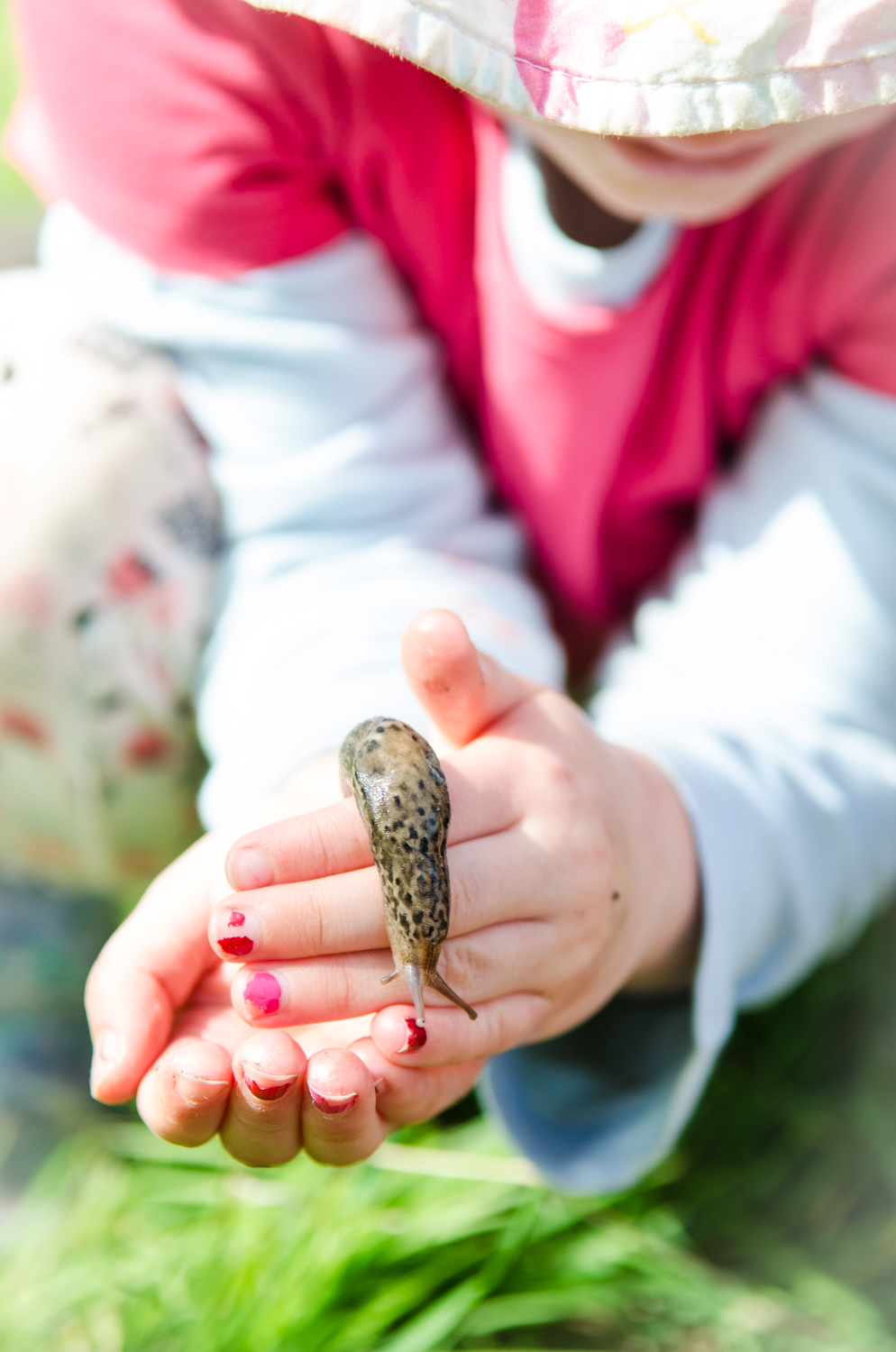 Demystifying the fear of 'nature' often means immersing yourself in it, interacting with it, and with a little persuasion, respecting it - no matter how slimy it is!