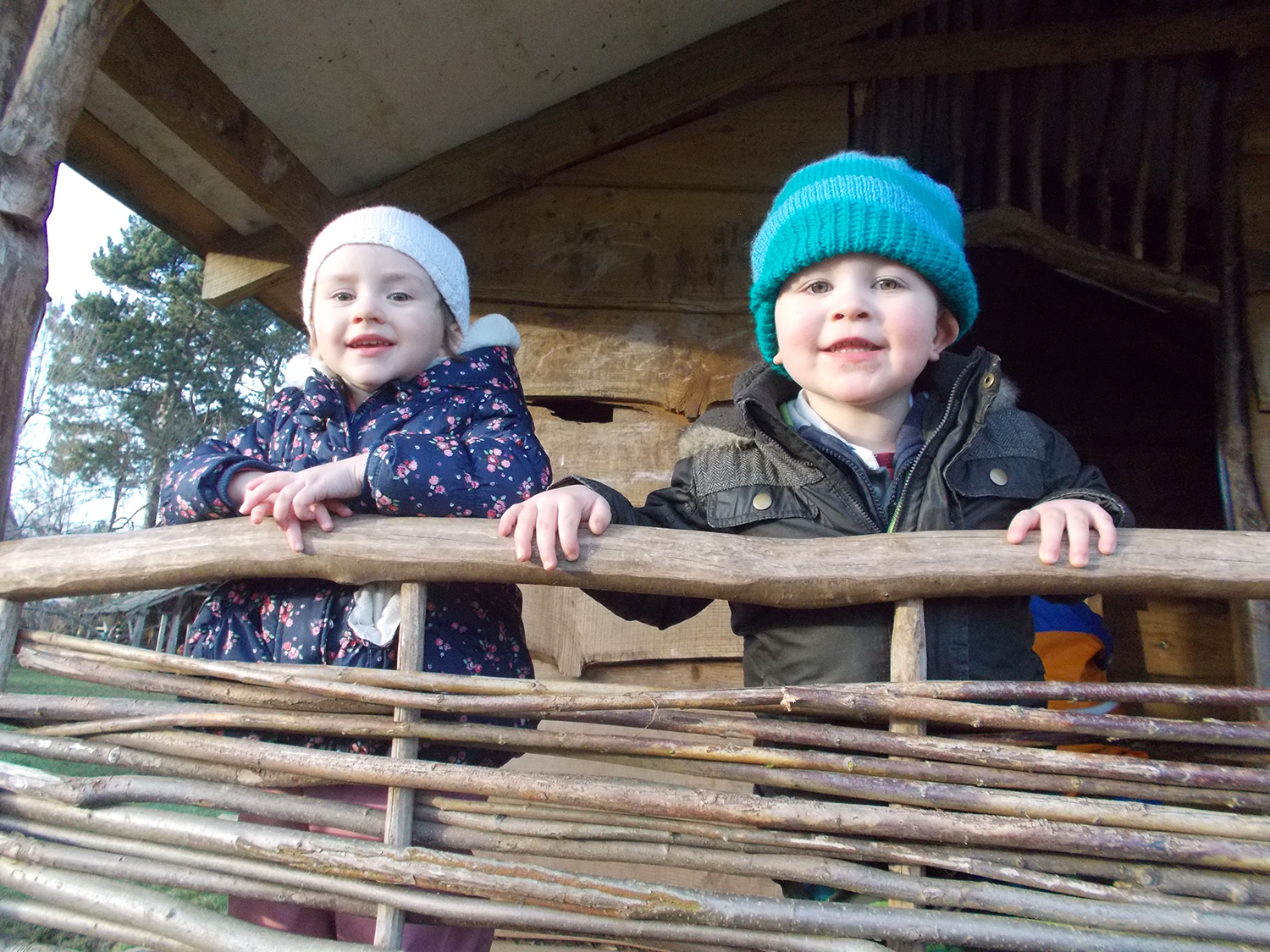 Burrow children in the tree house