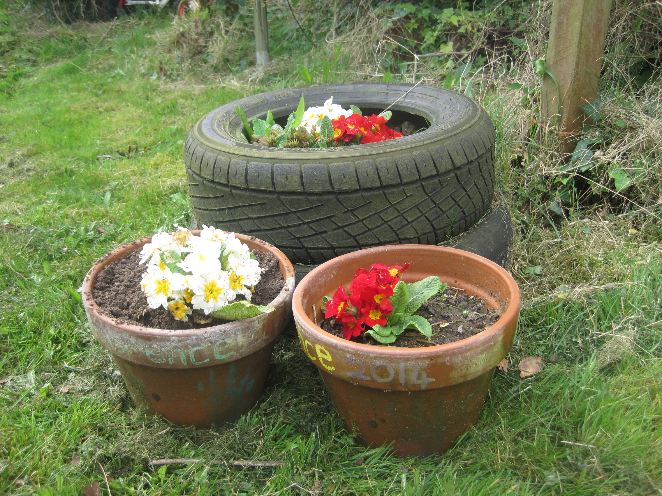 Pots and Plots with the Den