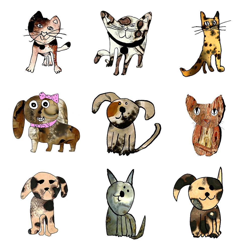 Cat+dog square.jpg
