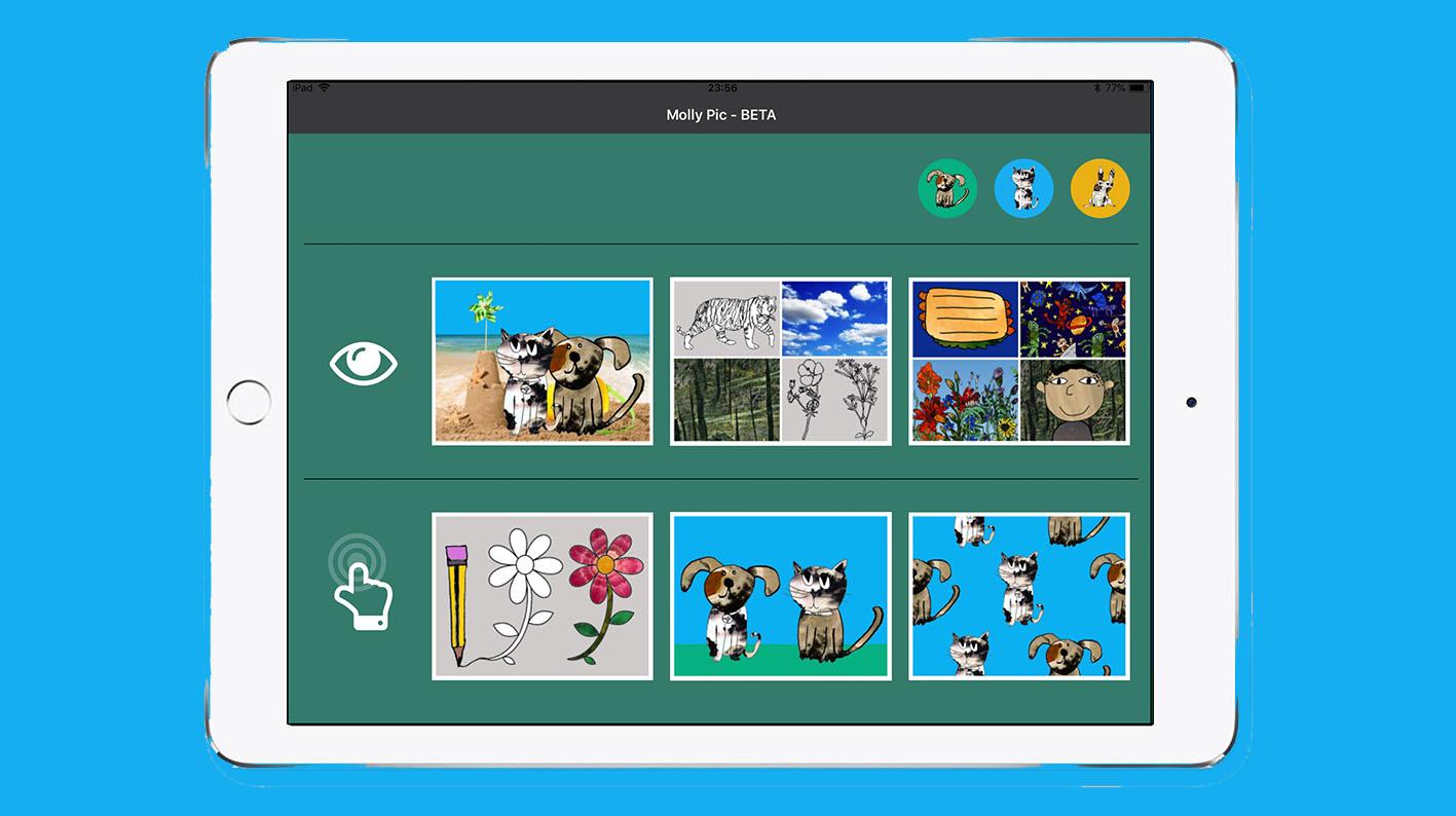App interface on iPad.jpg