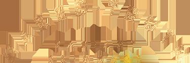 NAKE_LogoDemiLune-GOLD copy smaller.png