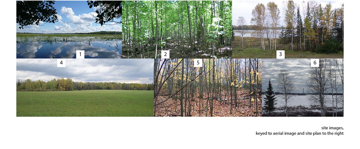 Site-Images copy.jpg