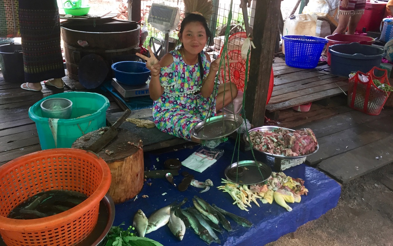 Karen State, Myanmar (Burma) | Fish, like those pictured on the left, have supported people in Southeast Asia for millennia. Now, landscapes and farming practices are being converted in order to grow the soy and corn used for feeding chickens and pigs, pictured at right.