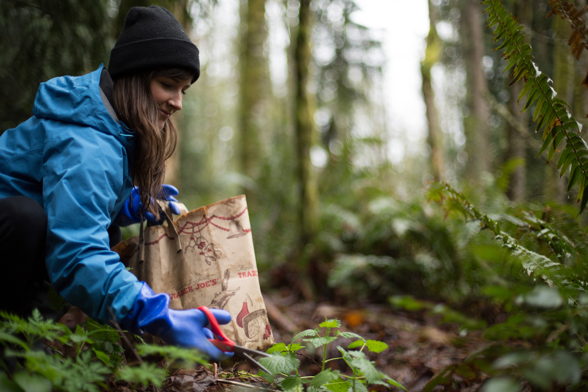 Running With Forks Kirsten McCormick Nettle Foraging